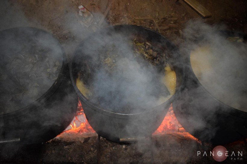 Ayahuasca Cooking 2