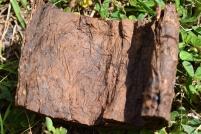 Fermented Leaf of Mapacho