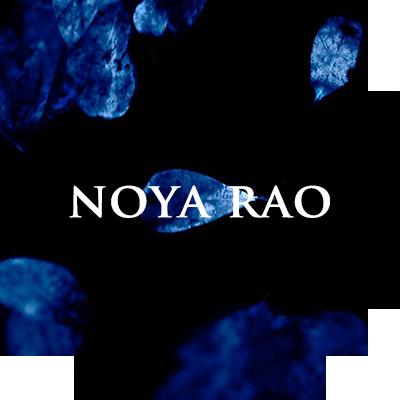 plant-noyarao